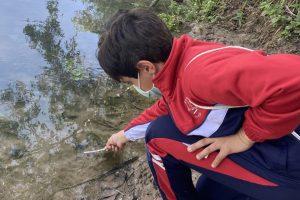 sostenibilitat riu xuquer alumnat primaria xuquer aprenem en un entorn real (2)
